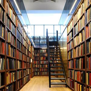 Библиотеки Власово